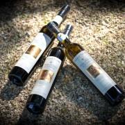 Visuel-3 bouteilles verre sur cailloux